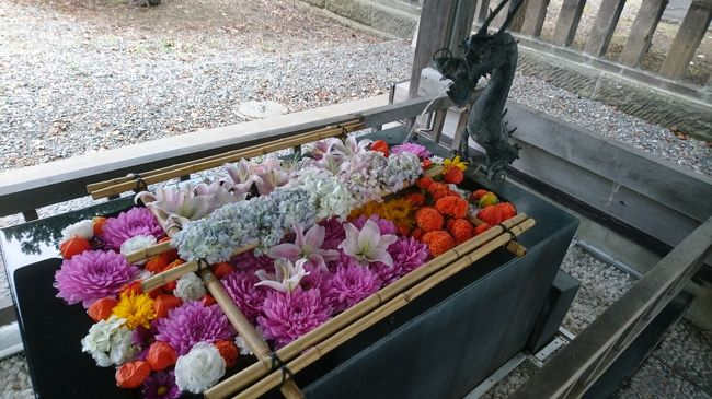 秋の花手水・札幌北区と東区。