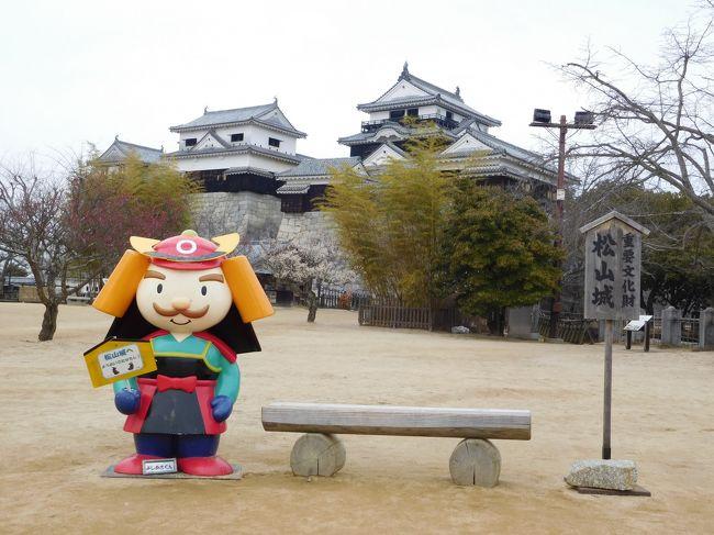 久々のお城巡りの旅@愛媛県<br />1日目は、松山空港に到着後、「松山城」を見学。<br />その後、車で1時間かけて「今治城」へ。<br />今治では、ご当地グルメの「焼豚玉子飯」を頂きました。