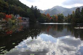 GOTOトラベル北九州の旅・・金鱗湖周辺をたっぷり、湯布院を散策します。