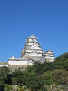 天橋立を観光したので、今年は日本三景を全部クリア!白鷺城の美しさは息を呑む美しさでした!