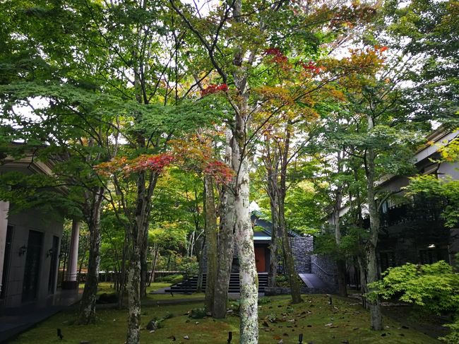 群馬で富岡製紙場とか高崎で泊まって横川で釜めし食べてJRバスで軽井沢に移動しました。軽井沢はあまり縁のないところですが,ヒルトンホテルがあるので来てみました。軽井沢は20年振りです。奥さんは初めてのようでした。<br /><br />10/18(日)<br />横川→軽井沢<br /><br />宿泊先<br />Kyukaruizawa Kikyo, Curio Collection by Hilton<br />3万円++でGOTOトラベル利用で割引<br /><br />10/19(月)<br />軽井沢→東京