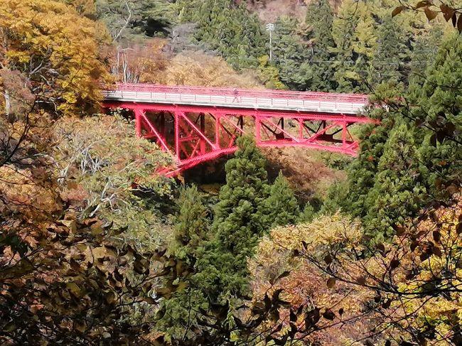 2度山田牧場の紅葉にあわせて10月中に訪れていたが、今回は高井橋のあたりのよくポスターになっている赤い橋の周りが紅葉している写真を撮りたくて本日見ごろ情報を信じて行ってきました。