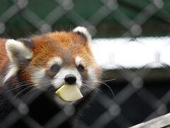 作成中 大牟田市動物園&福岡市動物園