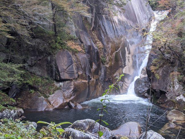 月曜日は有給休暇で4連休。土曜日~山梨県に遊びに行くことにした。<br />忍野八海、カチカチ山富士山パノラマロープウェイ、小作でほうとうなど<br />泊まる場所は石和温泉のスーパー銭湯、薬石の湯瑰泉と石和健康ランド<br />山梨は遠くなく1泊2日で行けて、お気に入りの健康ランドもあり今回5度目<br />2016年1月に土日1泊2日で忍野八海と富士山パノラマロープウェイ(薬石の湯瑰泉泊)<br />2016年4月に土日1泊2日で鳴沢氷穴・富岳風穴(石和健康ランド利用&薬石の湯瑰泉泊)<br />2016年7月に土日1泊2日で善光寺、武田神社、甲府城跡、昇仙峡(薬石の湯瑰泉泊)<br />2018年3月~4月に土日1泊2日で富士山パノラマロープウェイと忍野八海(薬石の湯瑰泉利用&石和健康ランド泊)<br /><2020/10/31金><br />おもてなしのお宿上野のカプセルに宿泊<br />↓<br /><2020/11/1土><br />忍野八海<br />富士山パノラマロープウェイ<br />ほうとうのチェーン店小作でほうとう<br />薬石の湯瑰泉に宿泊<br />↓<br /><2020/11/2日><br />インド料理店タージマハルでカレー&ナン食べ放題ランチ<br />昇仙峡ロープウェイ<br />昇仙峡<br />石和健康ランドに宿泊<br />↓<br /><2020/11/3月><br />新大久保トマトでサムギョプサル