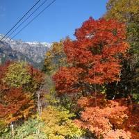 秋の紅葉を求めて新穂高ロープウェイへ GO!!