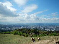 若草山へドライブ◆7ヶ月ぶりのお泊まり旅行は『変なホテル奈良』で《エピローグ》
