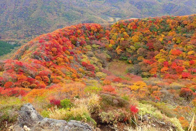 コロナでセーブしていた遠征登山<br />10月に一生分の紅葉登山、行ってきましたwww<br />紅葉見頃に合わせてどんどん南下しラスボスは九重連山<br />今年の紅葉は当り年?!<br />予想以上に燃えていました~!!<br />