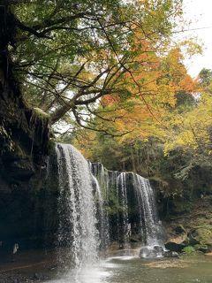 熊本 7歳,5歳子連れ 日帰りドライブ 小国 鍋ヶ滝+下城大イチョウ+杖立温泉