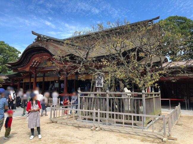 主人から&quot;休みの度に松山へ帰省するばかりだから、たまには何処かへ遊びに行きたいだろう?&quot;と言われ、主人も私も行ったことがなかった福岡へ行くことになりました<br /><br />2日目は太宰府天満宮、令和ゆかりの坂本八幡宮や大宰府政庁跡へも行ってきました