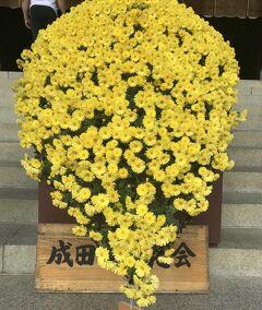 花を求めて 母と一緒に成田山 ニューオータニ幕張にお泊まりそして谷津バラ園