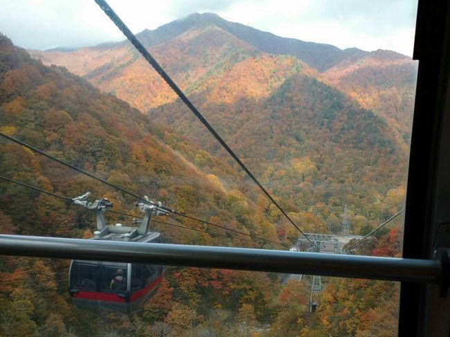 紅葉の水上温泉、谷川岳その1 谷川岳ロープウェイと水上高原ゴルフ