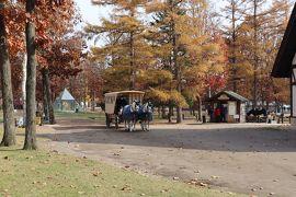 GOTOトラベル北海道の旅・・ドレモルタオとノーザンホースパークを訪ねます。