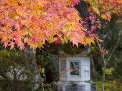 20201110-2 京都 三尾エリアの紅葉巡り其の二、槙尾山西明寺