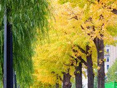 「 秋色をさがしに 日比谷公園~丸の内 さんぽ」 2020