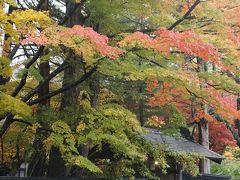 2020年11月GO TOを使って秋の秋田から岩手へ一人旅 2.紅葉眩しい秋の角館武家屋敷を歩く