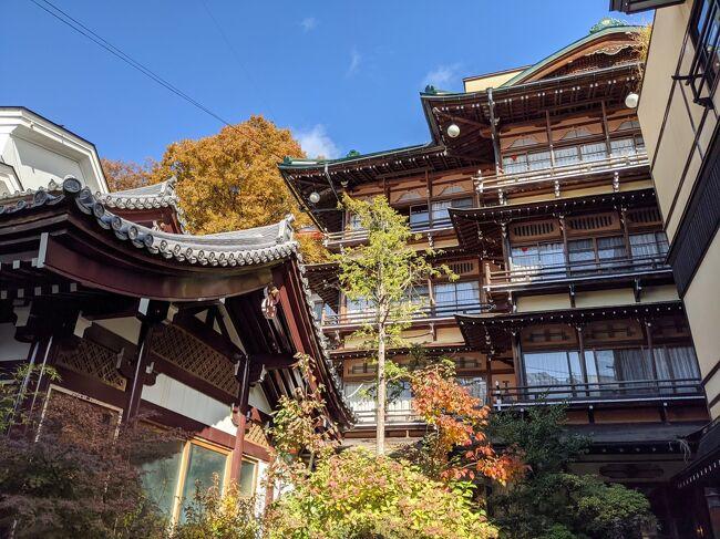 以前からずーっと行きたいと願っていたお宿2つを訪れる機会が、とうとう訪れました。<br />渋温泉の金具屋さん、湯田中温泉のよろづやさんの2軒。<br /><br />有名どころで、いろいろなところで見る機会があり、そのたびに「行きたいなぁ!」と思っていたこの2つのお宿の位置が、あんなに近い、徒歩圏内とは全く知りませんでした。<br /><br />「えぇぇ!たった一度の旅で両方とも堪能できるんなら、両方行くしかないではないか!」と喜び勇んで計画を立てました。<br /><br /><br />素晴らしいお宿、素晴らしい温泉、いい体験できました♪<br /><br /><br /><br />こんなに紅葉真っ盛り、ということは栗の収穫のシーズンでもある!と気づき、せっかく栗の名産地、小布施も近いので、そちらもルートに含めることにしました。<br /><br /><br />【今回のルート】<br />渋温泉 → 小布施 → 湯田中温泉 → 須坂 → 長野<br /><br /><br />この旅行記は、その渋温泉編。<br /><br /><br />小布施・湯田中温泉編はこちら。<br />長野 / 小布施・湯田中温泉 旬の栗を楽しみ 最高に素敵な温泉へ<br />https://4travel.jp/travelogue/11663694<br /><br />須坂・長野編はこちら。<br />長野 / 須坂・長野 素敵な蔵の街と 善光寺と THE FUJIYA GOHONJIN (藤屋御本陳)<br />https://4travel.jp/travelogue/11665266<br /><br />