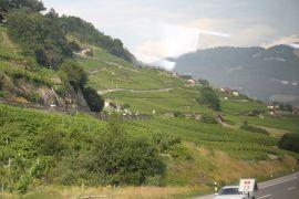 アルプス5大名峰と絶景列車の旅 22 レマン湖の畔 世界遺産ラヴォー地区のブドウ畑へ