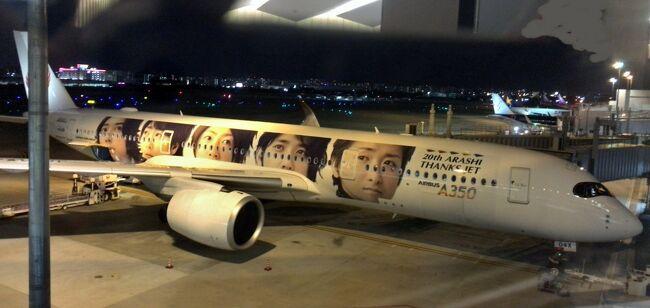 羽田空港国際線ターミナルから &quot;国内線乗り継ぎ&quot; もどきにて<br />福岡へ移動した備忘録