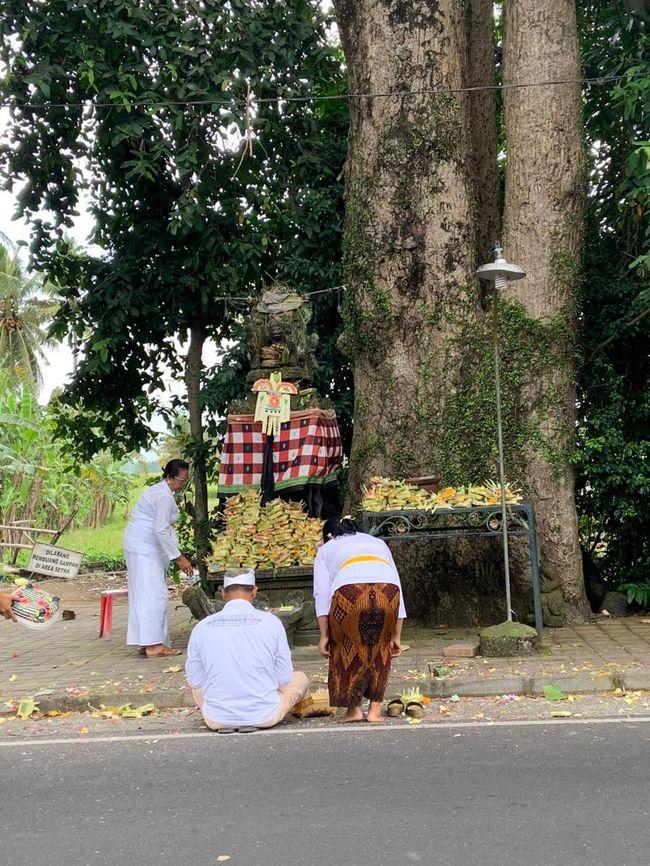 昨日のUpacara Tilem Kelima (新月)の様子です。<br />新月と満月は特別の日で、儀式が行われます。<br />また沐浴するのに最適な日とされているので、満月、新月に合わせて、旅行計画を立てられるのも良いかもしれませんね。