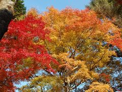 秋の香嵐渓 2020