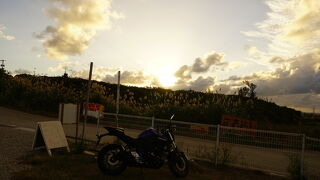 2020沖縄旅行(ツーリング:古宇利島・龍神の湯・道の駅いとまん)