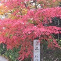 2020年秋 京都 大原三千院・・・  寂光院 久しぶりにめぐり会えた京都の紅葉です。