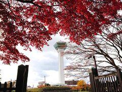 息子の初飛行機はGOTOキャンペーンで函館へ【その2】