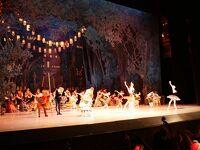サンクトペテルブルク&モスクワ 4日目 エカテリーナ宮殿みて初めてのバレエ鑑賞