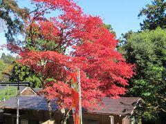 御岳山&大塚山の秋散歩