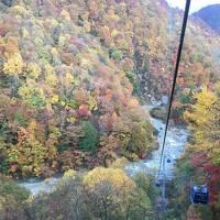 絵葉書の様な紅葉と雪山を一度に味わう越後・信州  感動旅2、苗場ドラゴンドラと奥只見湖遊覧船を楽しむ
