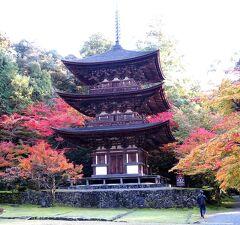 団塊夫婦の2020年日本紅葉巡りドライブー(滋賀1)湖東三山・西明寺へ