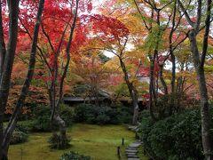 2020秋の京都1泊2日★7 大河内山荘庭園で紅葉を満喫