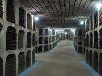 (1)モルドバ共和国   東欧の秘境 1/3 あまり知られていない「ワインの名産地」へ
