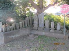 野田市の西三ヶ尾・道路沿い・石仏