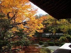 2020年 京都へ紅葉を見に気ままにぶらり旅