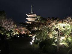 京都東寺の夜景と地元民さえ知らない極秘ライトアップ♬