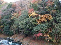 秋を探しに…三連休初日は丹沢湖・三保ダムの紅葉・温泉・お蕎麦も★(2020年11月)