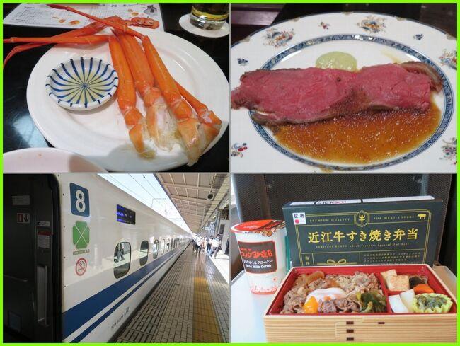 ホテルグランヴィア京都での最後のディナーは「カフェレストラン ル・タン」でオーダーバイキング。<br />本来はブッフェ形式だけど、コロナ禍でオーダーバイキングになっていて席についたままで次から次へお料理を持ってきてくれる。<br />食べ過ぎ―♪<br /><br />翌日はお昼までホテルのお部屋でのんびりして新幹線こだま号グリーン車で「ずらし旅」の帰路。<br />京都駅でお土産買って、「密」とは程遠くすいているこだまグリーン車で駅弁食べながらのんびりと帰ります。<br /><br />この旅のテーマである「密を避けて楽しむ」ため、様々なことに頭を悩ませ、何度も「やっぱり行かない方がいいのかな?」と逡巡しました。<br />そんな「コロナに負けない旅」の自分なりのやりかたでした。<br />ふり返ってみると100点満点には程遠いですが、それでもとても良い旅になりました。<br />