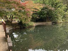 渋沢丘陵ウオーキング