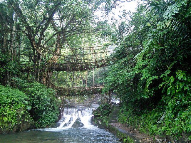 生きている橋を見るためノングリアット村へ行ってみました。
