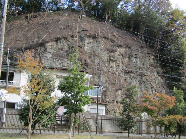 鎌倉時代の始めに、源頼朝が鎌倉の鶴亀の亀として亀ヶ淵に永福寺を建立した。しかし、由緒ある亀の地は二階堂字三堂などに地名が変わってしまった。そしてここ永福寺跡には頼朝に関連するものなど何も残っていないものと思っていた。しかし、頼朝の痕跡が見られた。<br /> 永福寺経塚山の崖は頼朝が永福寺を建立した際に、境内を広くするために、山の裾を削って崖にした。それが今、昨年の台風の復旧事業として急傾斜の崩壊防止対策を講じている。先日(11/19)から崖面に鉄の網を被せる工事から始めている。永福寺の三堂(阿弥陀堂、釈迦堂、薬師堂)の基壇の復原品と本物の頼朝に命じられて掘削された崖とでは「開運!なんでも鑑定団」に出したなら、復原品より本物の価値(評価額)が高いのは言うまでもない。しかし、災害復旧のために、近いうちにコンクリートで覆われてしまう。本来ならば、工事中に鎌倉時代初期の遺跡が出てきたならば、現地説明会をやって、近隣の住民にその頼朝がやらせた仕事を見せるべきであったはずだ。あるいは調査して資料を残すべきであったはずだ。しかし、工事している業者が工事記録程度に撮った写真くらいしか残されてはいないのだろう。世界遺産に落選した鎌倉市のやること(、正確にはやらないこと)であるから、お役所仕事と諦めるしかない。<br /> おそらくは、頼朝の軍(大手軍)が奥州平泉に遠征した大手中路は理智光寺橋から亀ヶ渕橋方面へと伸びていたのではあるまいか?凱旋後に、この地に永福寺を建立する際に三堂の裏山も何段かの段々に掘削して伽藍を建てる敷地を確保している。一方、三堂の向かいにある経塚山の裾野も掘削して池の広さを確保している。この池を造る際に大手中路と二階堂川は付替えられたのであろう。そしてほぼ垂直の崖の下には二階堂川と道路の間に緩衝地を残していた。それが750年も経つとこの土地に住宅を建て、土砂崩れに遭っている。頼朝の指示を守らないからである。<br />(表紙写真は永福寺経塚山の崖)
