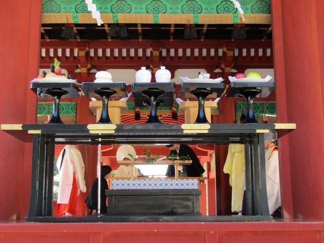 鶴岡八幡宮では楼門前に参拝者が並んでいる。授札所にも列だ。この3連休の中日の日曜日ということで鎌倉は人出が多いのだろう。また、先日(11/16)は一日遅れの七五三詣りを多く見掛けたが、やはり、一週間遅れの七五三詣りも結構多いものだ。<br /> 休日ということで結婚式も多いようだ。舞殿では挙式中であるが、次の予約客の新郎新婦は柳原神池に架かる橋で写真撮影している。先日(11/16)は月曜日なので結婚式の予約がなかったのだそうだ。七五三詣りの翌日なので予約を入れなかったという訳ではないという。<br /> 鎌倉国宝館の銀杏の木は半分近くの葉が落葉している。鎌倉国宝館では敷地内を毎日清掃しているであろうから、落ち葉を踏みしめることはできないであろう。<br /> 菊まつりは先日(11/16)終了したが、手水舎の手水鉢には今週はズーと菊の花を浮かべている。今日はバッテリーが切れていないので三度目の正直で写真が撮れた。<br />(表紙写真は舞殿での結婚式風景)
