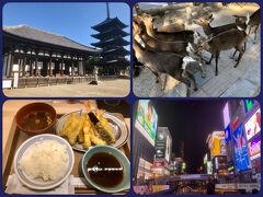 1年振りに西へ!大阪2泊 ③ ちょろっと奈良(興福寺~奈良公園)~とんぼりリバークルーズ