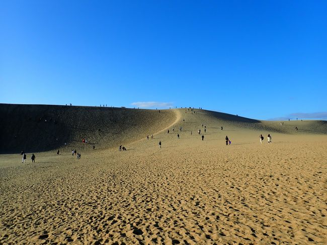 登入堂編に引き続き、鳥取砂丘に行って、次の日は出雲大社へ移動しました。