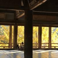 はじめての広島 ひとり旅 1泊2日 1日目 宮島と平和記念資料館