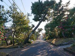 旧東海道(藤沢宿~平塚宿~大磯宿)を散策。その3(平塚・大磯)