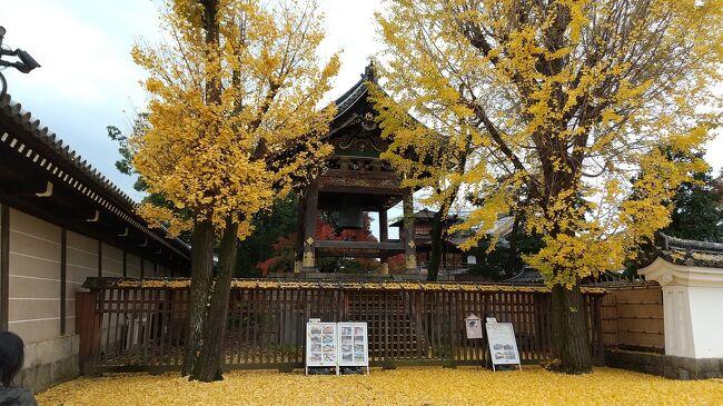 紅葉の京都  六盛~権太呂