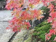久しぶりにおばさん二人旅 箱根で紅葉狩り 2020