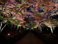 2泊3日!京都で紅葉狩り♪(1日目)