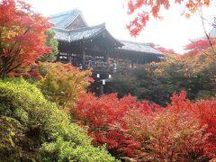 団塊夫婦の2020年日本紅葉巡りドライブー(京都4)紅葉狩り定番の東福寺へ